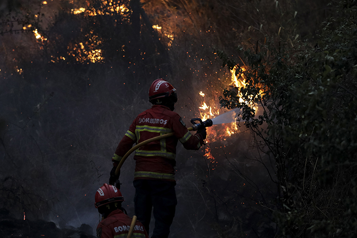 Macao (Portugal), 21/07/2019.- Firefighters try to extinguish a wildfire at Cardigos, near Macao, Portugal, 21 July 2019. According to reports, hundreds of firefighters, vehicles and planes are fighting at least three wildfires that broke out across central Portugal on 20 July and spread by strong wind. (Incendio) EFE/EPA/PAULO NOVAIS