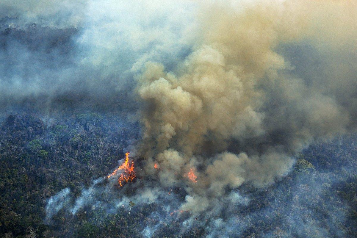 Incendio en la Amazonia - Brasil