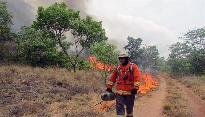 bomberos amazonia