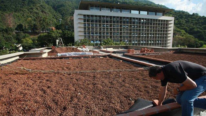 Construcción de techo verde en la UCAB
