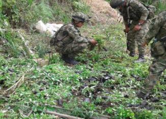 Colombia soldados