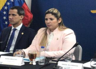 Guaidó y Bracho